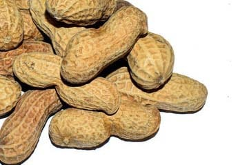 Salted Peanuts In-Shell